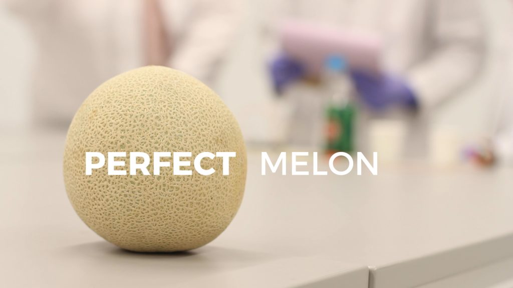 """A melon rests on a table in the foreground with """"Perfect melon"""" printed across the screen. Blurred and in the background are three scientests and beverages."""